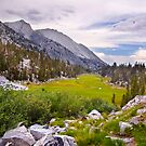 Meadow Below Treasure Lakes by Justin Mair