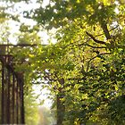Iron bridge in fall by Severin