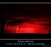 Red Version - Spring Lightning by Daniel Fitzgerald