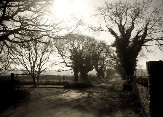 Irish Country Road by Daniel Bullock