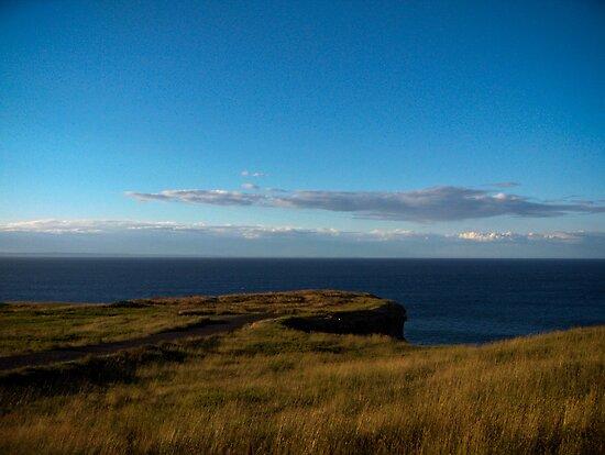 Bell Island Coast by Daphne Johnson