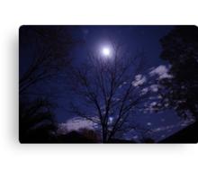 Moony Canvas Print
