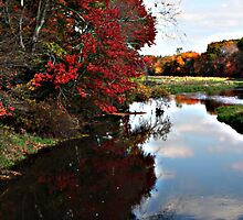 Assabet River in Fall-  2- Hudson, MA, USA by Dennis Knecht