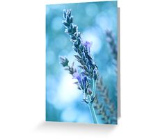 Lavender Bokeh Greeting Card