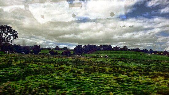Look outside (P1140261 _XnView _Qtpfsgui _GIMP) by Juan Antonio Zamarripa