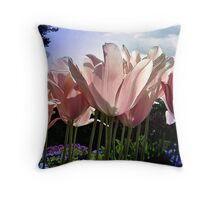 I Can See Right Through You Throw Pillow