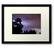 Bug Zapper Framed Print