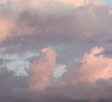 Pink Clouds by Laurie Puglia