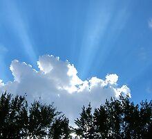 God rays by Toni Neuhaus