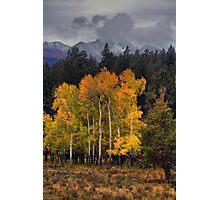 A Stormy Autumn Photographic Print