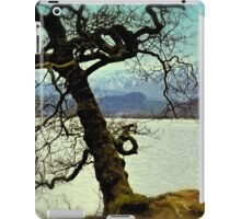 Loch Venachar iPad Case/Skin