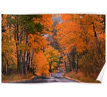 Autumn Travels Poster