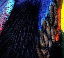 Cassowary neck by Tamara  Kenneally