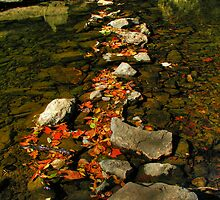 Pathway by LizzieMorrison