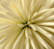 Vanilla Fingers by NKSharp
