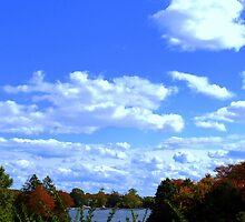 SKY, LAND, AND SEA by SharonAHenson