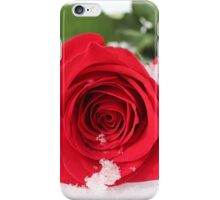 Rosa - Red Rose In Snow | Center Moriches, New York  iPhone Case/Skin