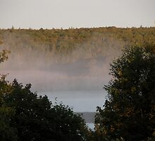 Mist on the Lake by Gerry Curry