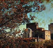 Dayton View by jpryce