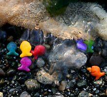 Rainbow Fish 2 by Lividly Vivid