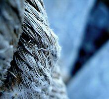 Seaside Rope by Maureen Kay