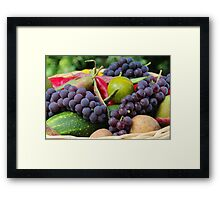 Nature's Gifts II  Framed Print