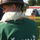pet rat at rockingham show by yorkyanne