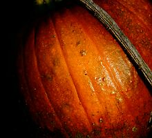 """Pumpkin Patch"" by Bradley Shawn  Rabon"