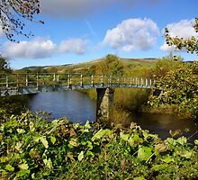 Bridge over the River Swale by Trevor Kersley