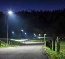 Night road with curves and street lamp by enolabrain