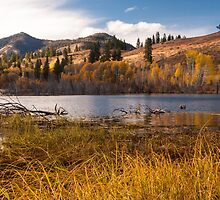 Autumn at Beaver Pond by lkamansky