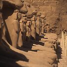 Ram sphinxes, Karnak Temple by cascoly