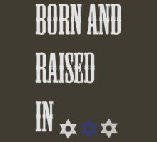Born in Israel by Vulcan Spark Studios