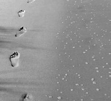 Footprints in the Sand by Brittany Scales