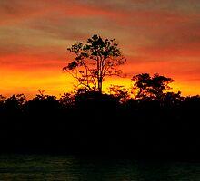 Sunrise on the Amazon River, Brazil by Paris Lee