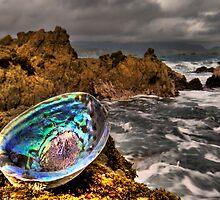 Rough Paua Shell by Ken Wright