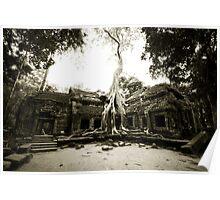 Temple at Angkor Poster