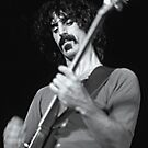 Frank Zappa - Sydney Hordern Pavillion - 1973 by willb