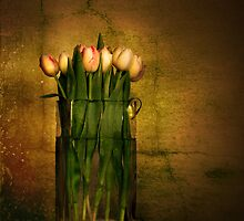 Tulips by Heather Prince ( Hartkamp )