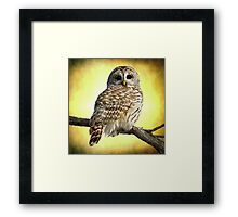 She sees right into the heart of me Framed Print