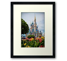 Beauty All Around Framed Print