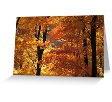 Flaming Autumn Forest Greeting Card
