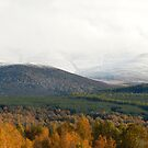 The Cairngorm Mountains by Mirka Rueda Rodriguez