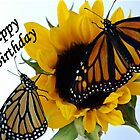 Butterfly Birthday Card by Molly  Kinsey
