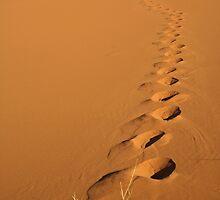 Footprints by Karen Millard
