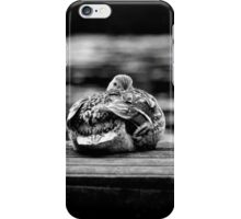 Here's Lookin At You Kid! The Sequel! iPhone Case/Skin