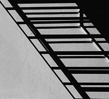 Staircase and Shadows by Dave  Cox