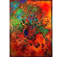 Tree of Life- Silk print Photographic Print