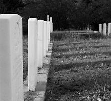 The Fallen by Jennifer Ellison