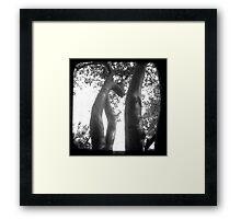 Trunks Framed Print